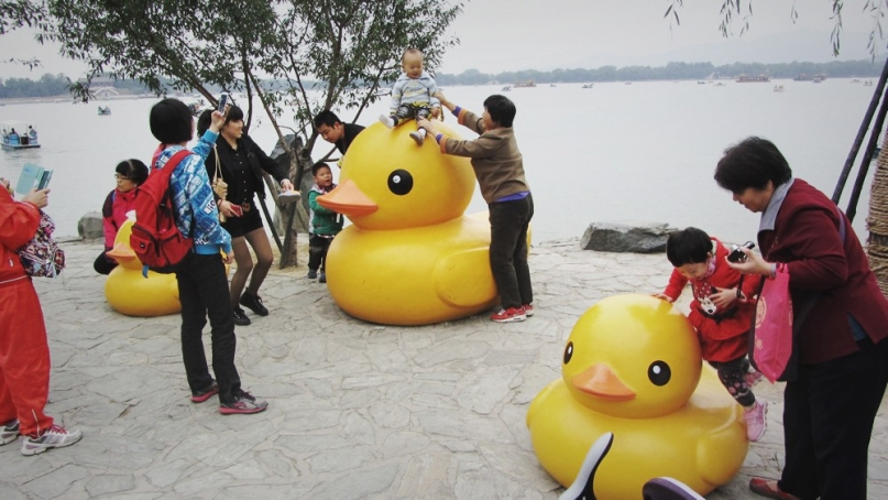 Beijing Summer Palace Yellow Ducks